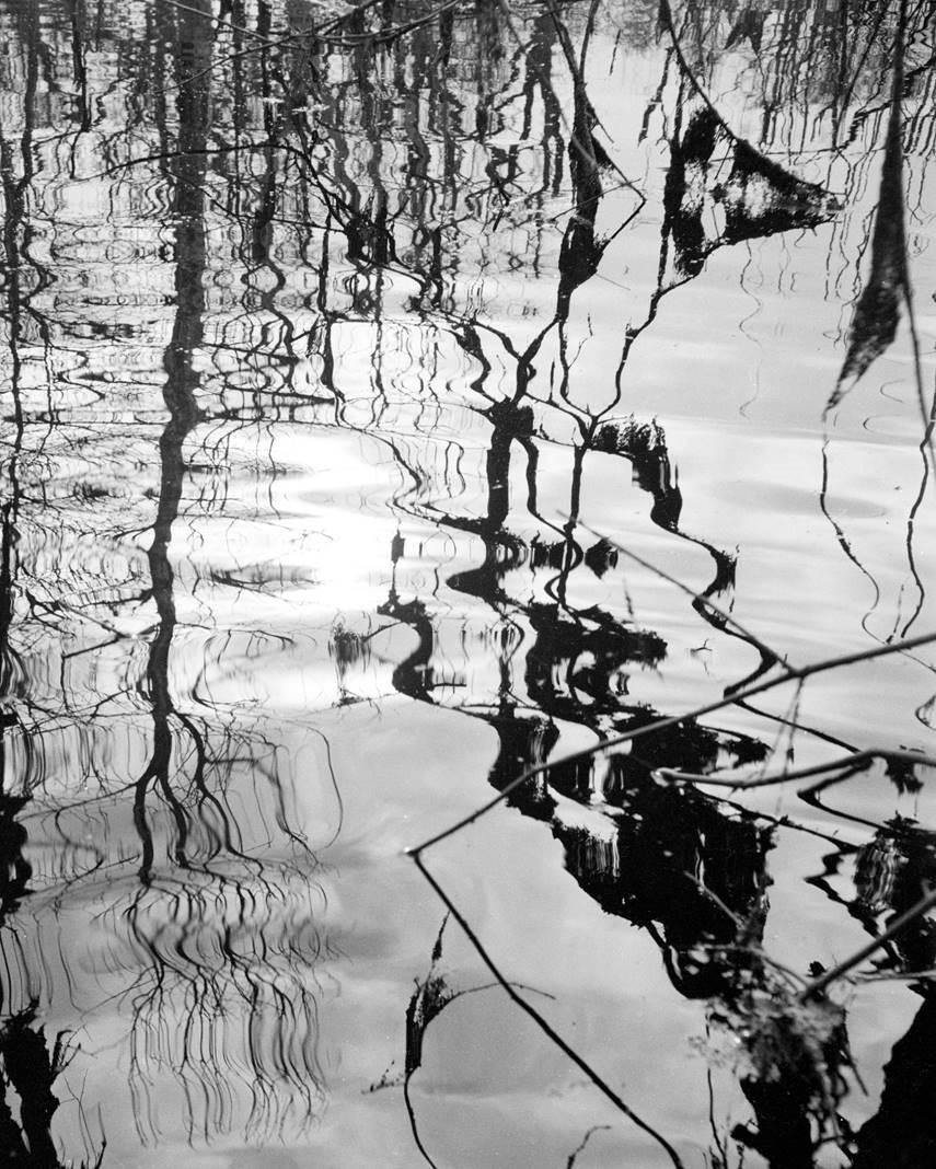 Lucien Clergue_Etangs_1959_© Atelier Lucien Clergue